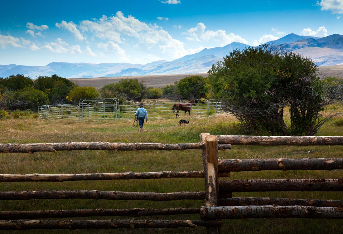 Simpson-Creek-Ranch-15