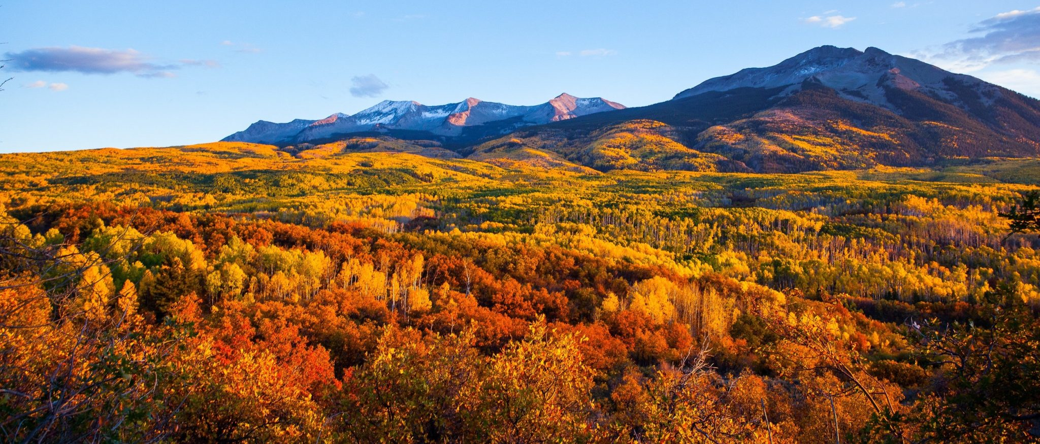 Mountain forest landscape in autumn